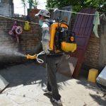 Sigue la campaña de prevención contra el dengue