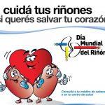 14 de Marzo: Día Mundial del Riñón